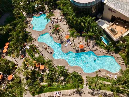 Marriott Marquis San Diego Marina: Birds eye view of the lush pool from our balcony