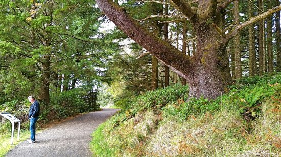 Ilwaco, Ουάσιγκτον: Cape Disappointment: Nature Walk path to one of 2 historic lighthouses