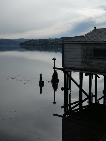 Portobello, New Zealand: Boat shed at Otago Harbour