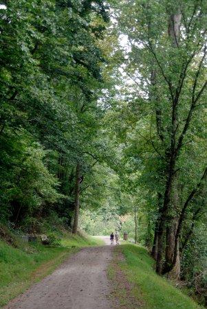 North Wilkesboro, Carolina del Norte: Jefferson Turnpike section along the Reddies River