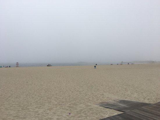 Ocean Beach Park: photo1.jpg