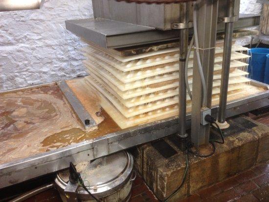 Bloomfield Hills, MI: pressing the apples