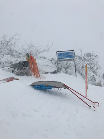 Perisher Valley, Australia: photo4.jpg