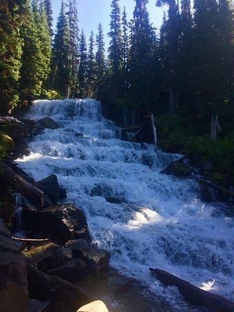Joffre Lakes Provincial Park: photo3.jpg