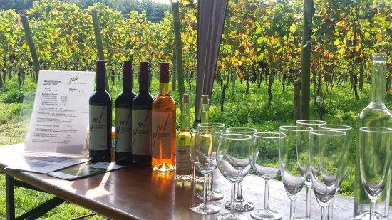 Wageningen, เนเธอร์แลนด์: Wagenings Wijngoed