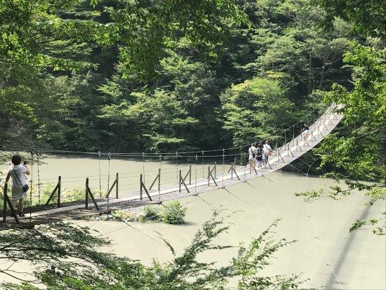 Kawanehon-cho, Giappone: photo1.jpg