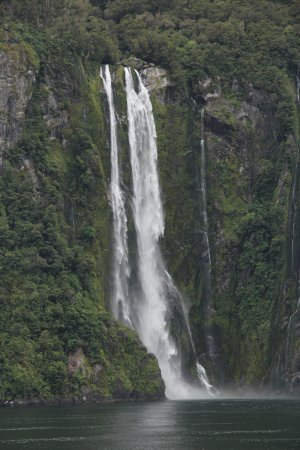 Milford Sound: Sterling Falls