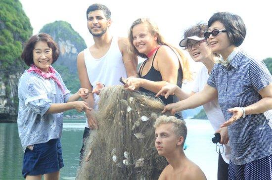 Visita la baia di Halong e la baia di