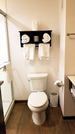 Manheim, Pensylwania: Bathroom in room 424