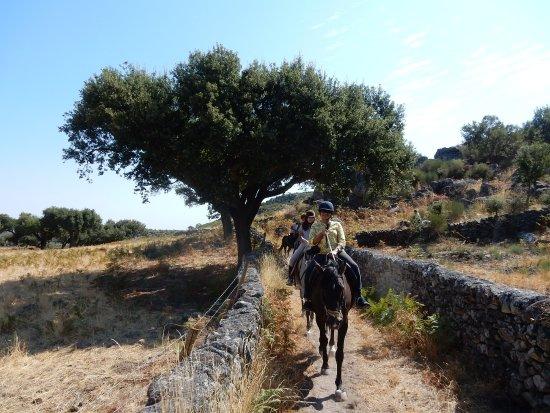 Santo Antonio Das Areias, Portugal: Riding in the Marvao area