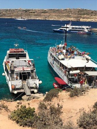 写真Hornblower Cruises枚