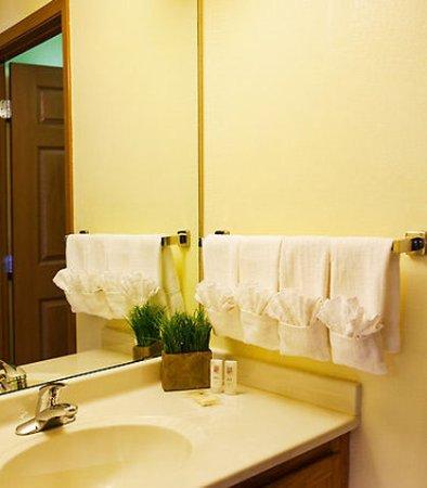 Sterling Heights, MI: Suite Bathroom