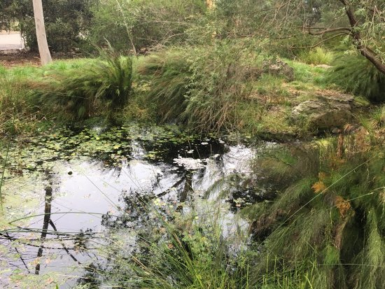 Richmond, Australia: Burnley Gardens
