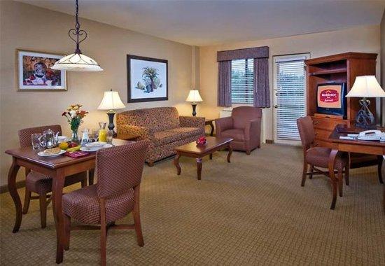 Plainview, Nova York: One-Bedroom Suite Living Area