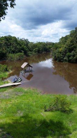 Фотография Amazonia Expeditions' Tahuayo Lodge