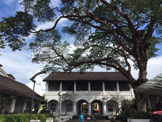 The Old Courthouse: ด้านข้างต้นไม้ใหญ่