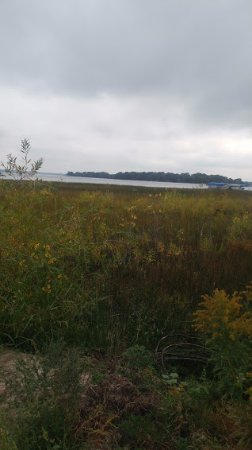 White Bear Lake, MN: the marsh area