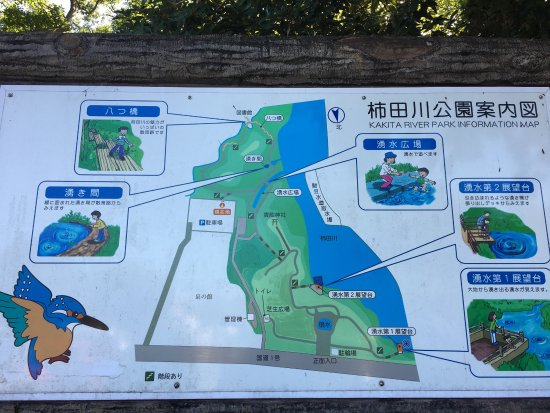 Shimizu-cho, Япония: photo4.jpg