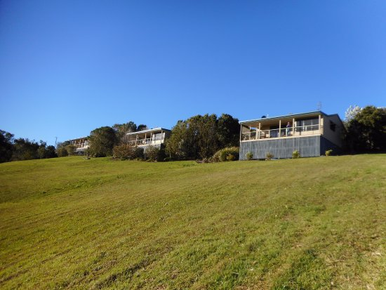 Blue Summit Cottages: Cottages and grounds