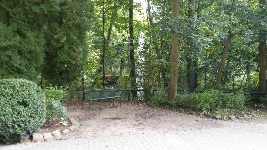 Eberswalde, Germany: 20170917_154034_large.jpg