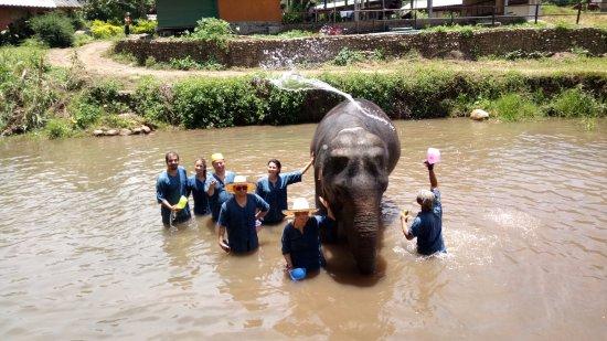 Mae Taeng, Thailand: Tunglakron Elephant Sanctuary
