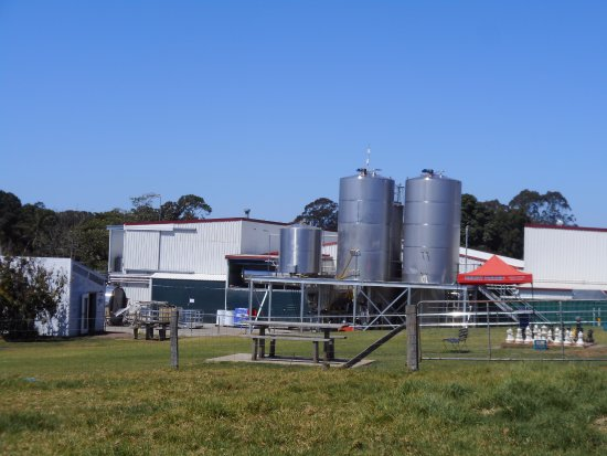 Maleny, Australien: The bottling area