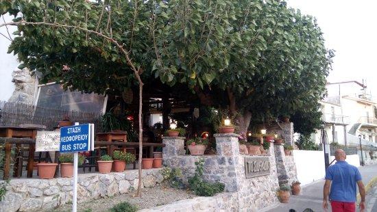 Spili, Griechenland: DSC_0052_large.jpg