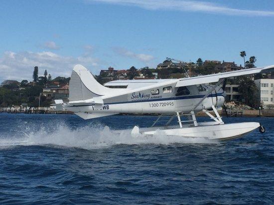 Rose Bay, Australia: photo1.jpg