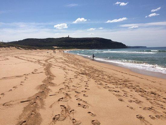 Rose Bay, Australia: photo2.jpg