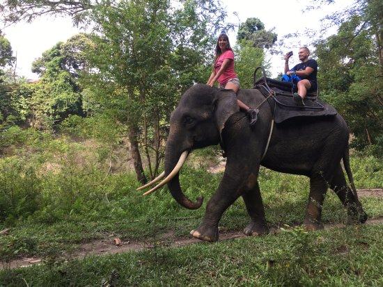 Washing Elephants in Tangkahan: inolvidable