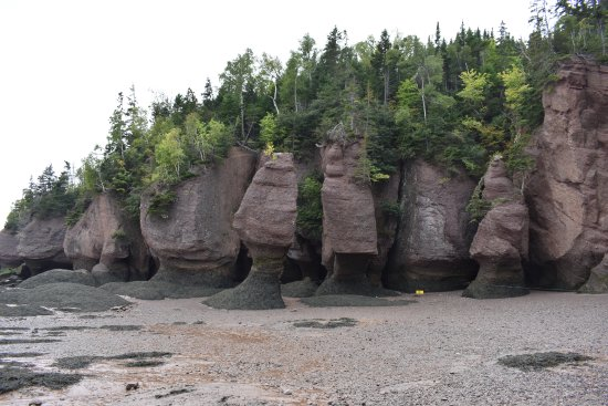 Hopewell Cape, Canada: Sculpted Rocks