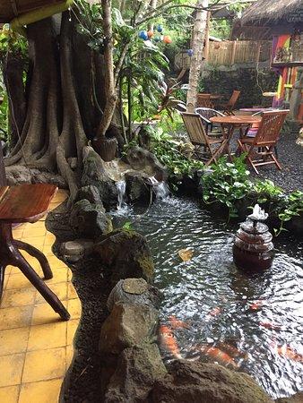 Manggis, Indonesia: photo8.jpg