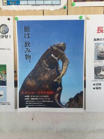 Otaru  Aquarium: photo1.jpg