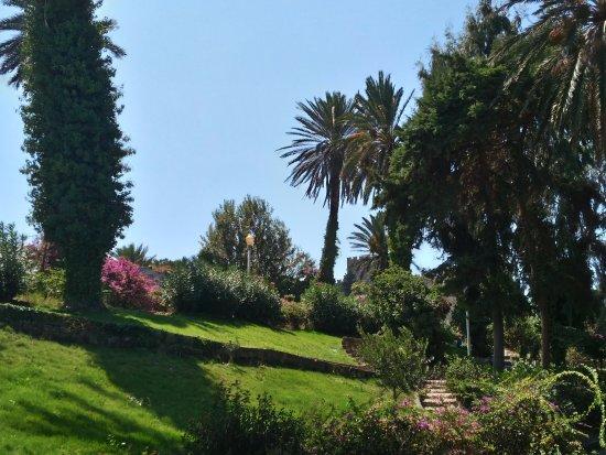 smartline Cosmopolitan Hotel : jardins de la ville de Rhodes