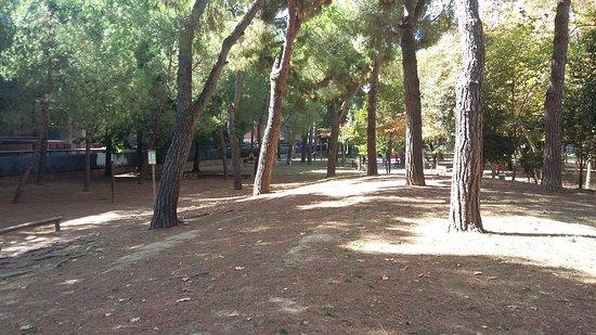 Parco Villa Sabucchi