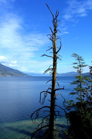 Summerland, Canada: Okanagan Lake