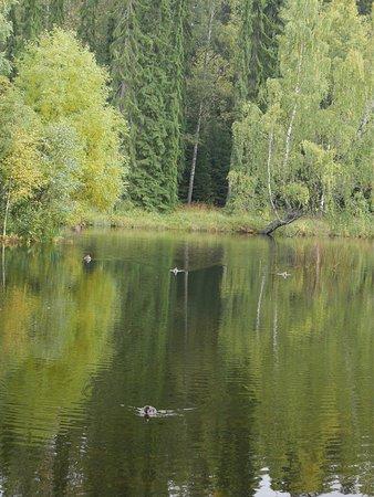 Haemeenlinna, Finland: photo1.jpg