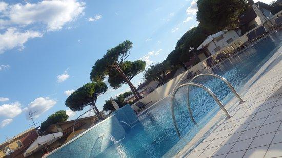 Bagno Conchiglia Cervia : Hotel conchiglia bild von hotel conchiglia cervia tripadvisor