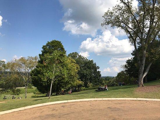 Arrington, TN: photo2.jpg