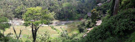 Puri Bunga Resort and Spa : 20170916_111016_large.jpg