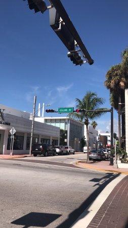 The Hotel of South Beach: photo1.jpg