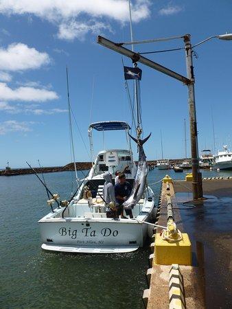 "Deep Sea Fishing Kauai : Off loading the ""Big Ta Do"""