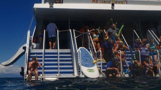 Вайкуку, Гавайи: Awesome time on the calypso.... slides and jump ramp fun too