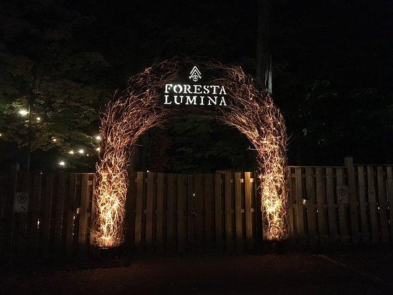 Foresta Lumina: photo0.jpg
