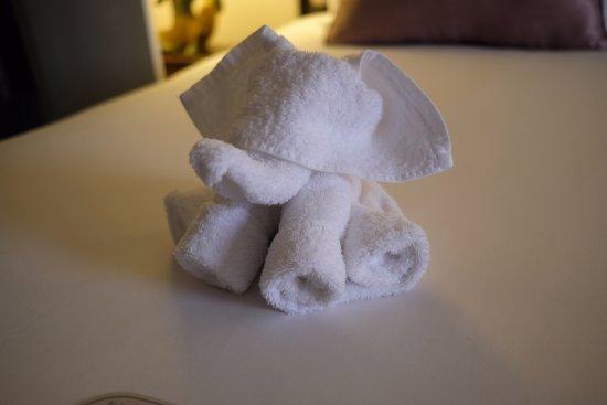 The Sukosol: Sukosol Elephant Towel