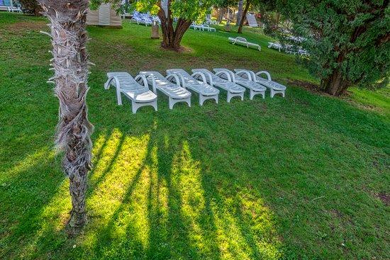 Hotel Zorna: Parco vicino alla piscina
