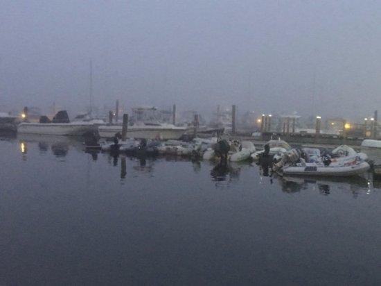 South Portland, ME: Foggy evening off the deck