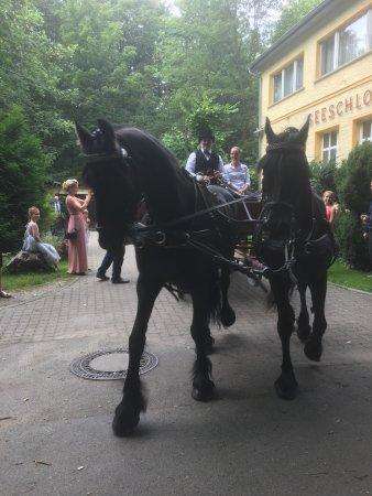 Eggersdorf, Duitsland: Ankunft einer Hochzeitsgesellschaft.