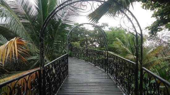 Saint Peter Parish, Barbados: Aerial bridge that leads to the aviary