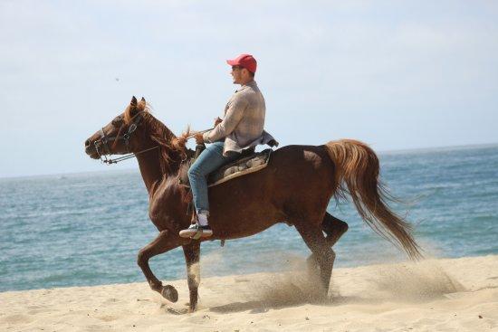 Hotel Riu Palace Riviera Maya Kristopher Telhami On Riding Beach